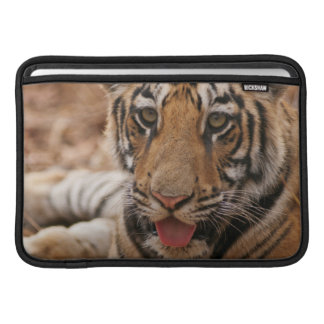 Young one of Royal Bengal Tiger MacBook Air Sleeve