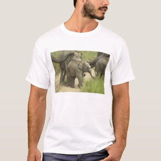 Young ones of Indian / Asian Elephant on the T-Shirt