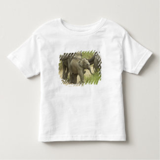 Young ones of Indian / Asian Elephant on the Toddler T-shirt