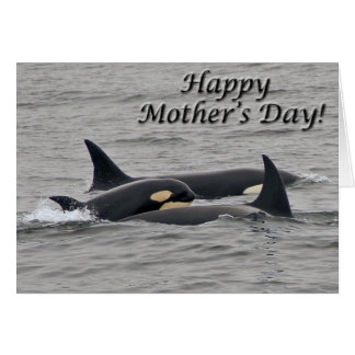 """Young Orca """"Happy Mother's Day"""" Card"""