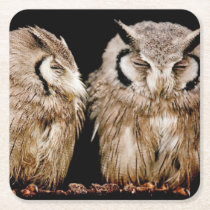 Young Owlets Square Paper Coaster