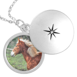 Young Palomino Horse Design for Animal-lovers Custom Jewelry