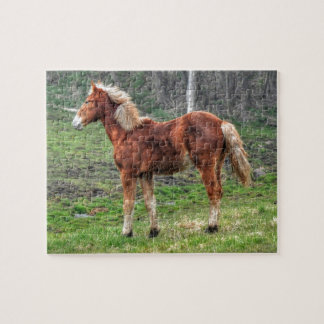 Young Palomino Horse Design for Animal-lovers Puzzles