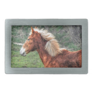Young Palomino Horse Design for Animal-lovers Rectangular Belt Buckle