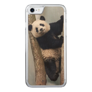 Young Panda climbing a tree, China Carved iPhone 8/7 Case