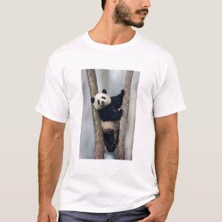 Young Panda climbing a tree, China T-Shirt