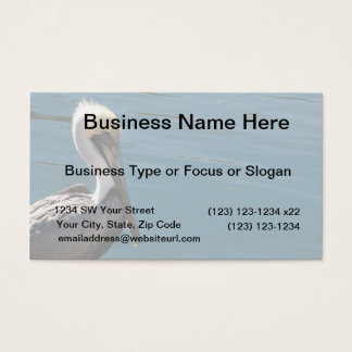 young pelican against water on left business card