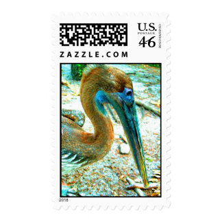 Young pelican head shot, high saturation color stamps