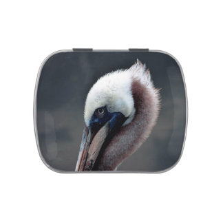 young pelican head view side bird candy tins