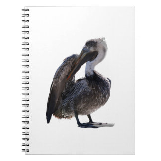 Young Pelican Preening cutout Notebook