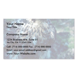 Young Peregrine Business Card Template