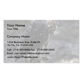 Young Peregrine Falcon Business Card