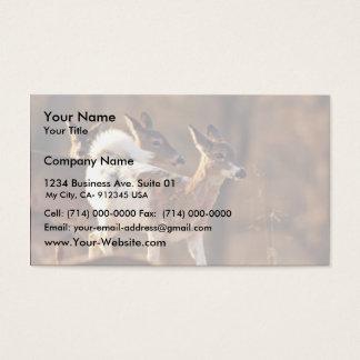 Young piebald deer business card
