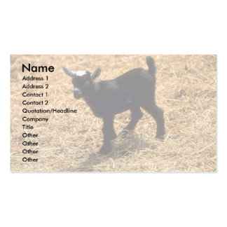Young Pigmy Goat Double-Sided Standard Business Cards (Pack Of 100)
