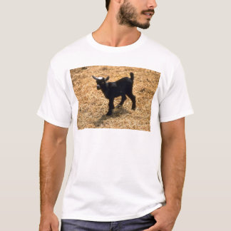Young Pigmy Goat T-Shirt