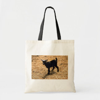 Young Pigmy Goat Tote Bag
