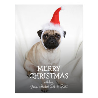 Young pug wearing Santa hat Postcard