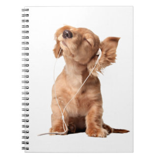 Young Puppy Listening to Music on Headphones Notebook