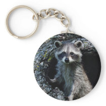 Young Raccoon Keychain