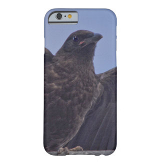 Young Raven on Quesnel Bridge w Sky Barely There iPhone 6 Case