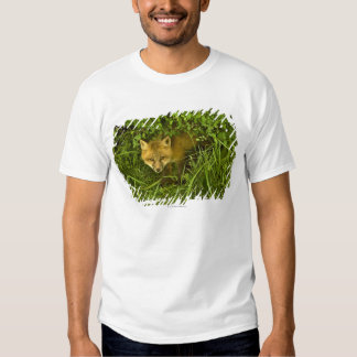 Young Red Fox coming out from hiding in bushes Tshirts