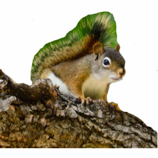 Young Red Squirrel Statuette