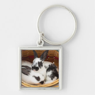Young Rex rabbits in Easter basket 2 Key Chains