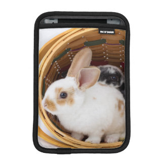 Young Rex rabbits in Easter basket Sleeve For iPad Mini