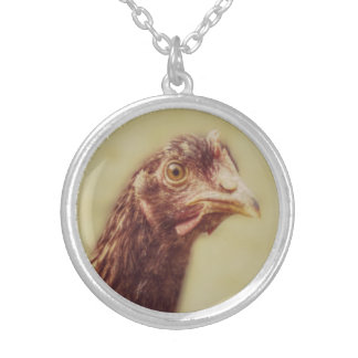 Young Rhodey Pullet Little Red Hen Chicken Round Pendant Necklace