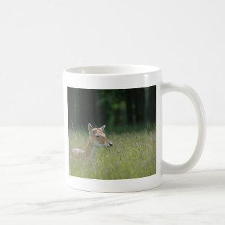 Young Richmond Park deer Classic White Coffee Mug