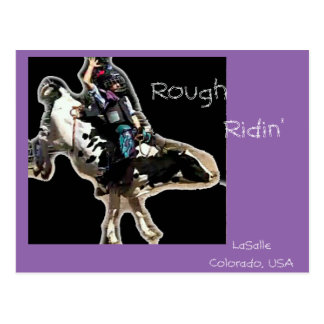Young Rider Postcard