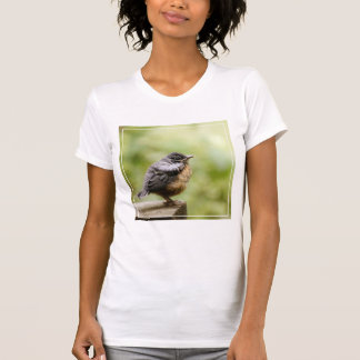 Young Robin Learning To Fly... Taking A Break On T-Shirt
