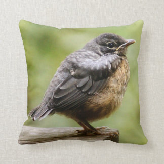 Young Robin Learning To Fly... Taking A Break On Throw Pillow