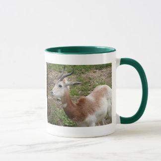 Young Scimitar-Horned Oryx Mug