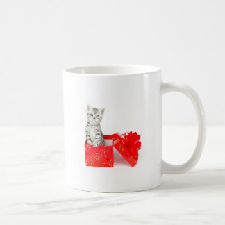 Young silver tabby cat standing in red box coffee mug