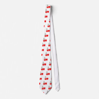 Young silver tabby cat standing in red box tie
