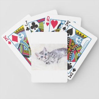 Young silver tabby spotted cat lying on sheep skin bicycle playing cards