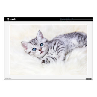 Young silver tabby spotted cat lying on sheep skin decal for laptop