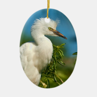 Young Snowy Egret Ornament