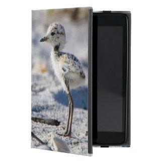 Young Snowy Plovers (Charadrius alexandrinus) iPad Mini Case