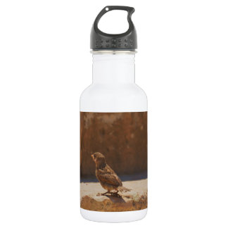 Young Sparrow Water Bottle