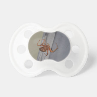 Young Spider spins a web BooginHead Pacifier
