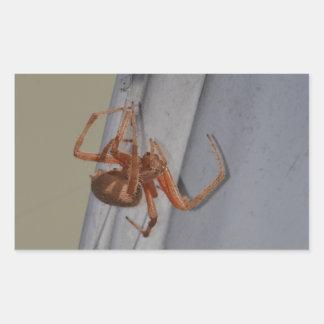 Young Spider spins a web Rectangular Sticker