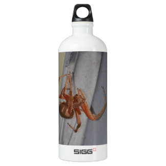 Young Spider spins a web SIGG Traveler 1.0L Water Bottle