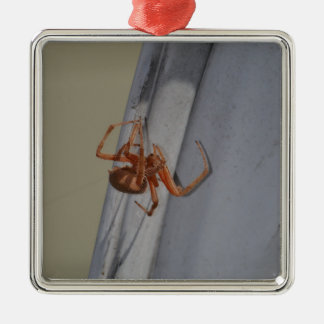 Young Spider spins a web Square Metal Christmas Ornament