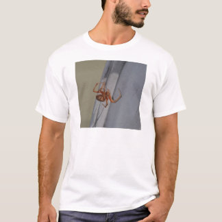 Young Spider spins a web T-Shirt