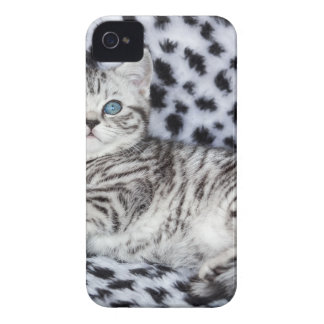 Young spotted cat  lying on black and white fur Case-Mate iPhone 4 cases