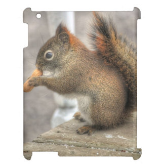 Young Squirrel eating a Peanut iPad Cases