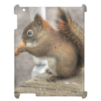 Young Squirrel eating a Peanut iPad Cover