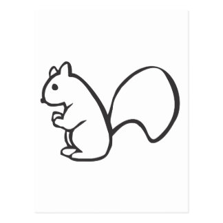Young Squirrel in Black and White Sketch Postcard